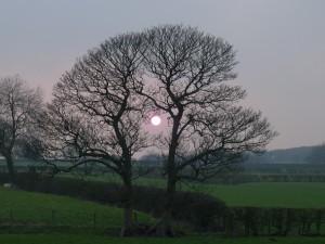 sunsetrg 003